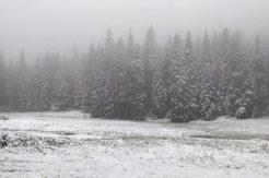Kumluca'nın yükseklerinde kar başladı; tarihe not düştük