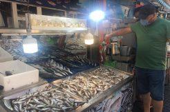 Amasralı balıkçıların ilk gün izlenimi: İnşallah bu yıl balık ucuz olacak