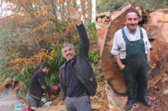 Ormanda sezon finali; umutlar 2021'e kaldı